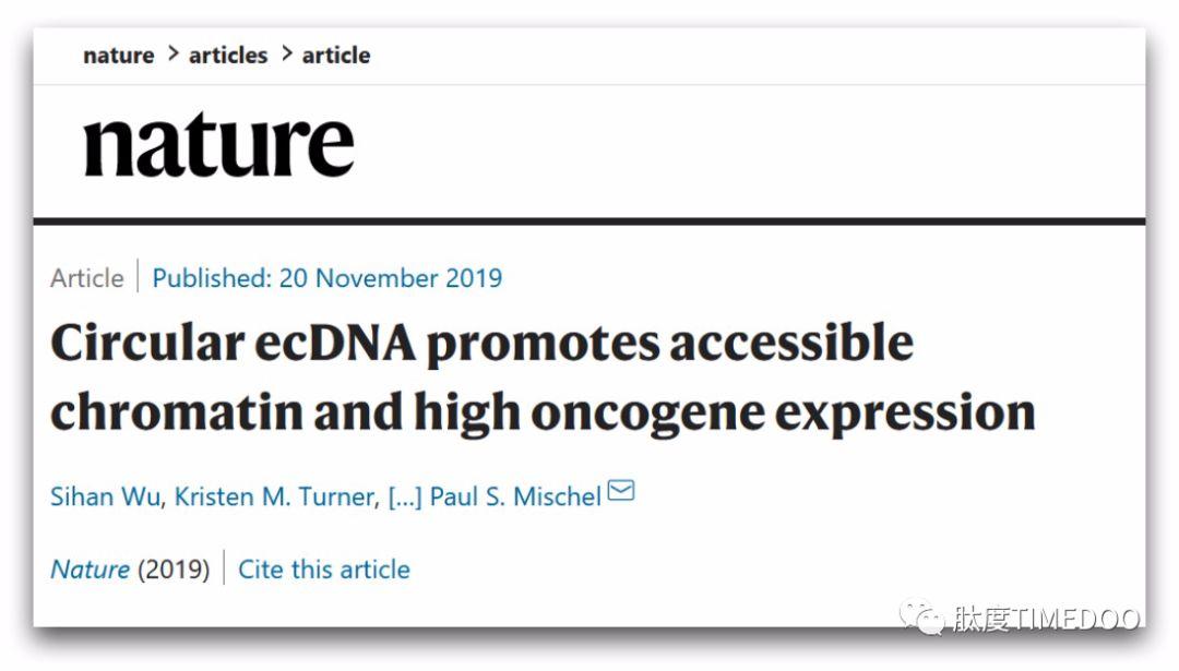 专访|Nature重大发现:癌基因竟不在染色体上?第一作者吴思涵亲身解读!-肽度TIMEDOO